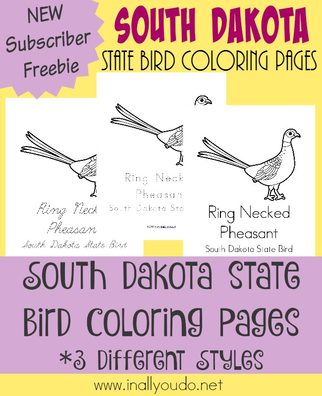 Learn more about the unique state bird of South Dakota with today's FREE Coloring Pages. :: www.inallyoudo.net