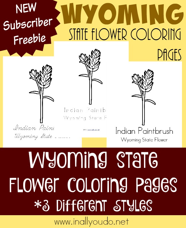 Wyoming may not seem like much, but it is full of rich history and beautiful landscape. Learn more about the states flower with today's FREE Coloring Pages. :: www.inallyoudo.net