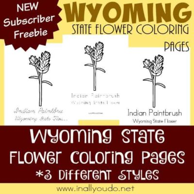 Across the USA in 31 Days: Wyoming