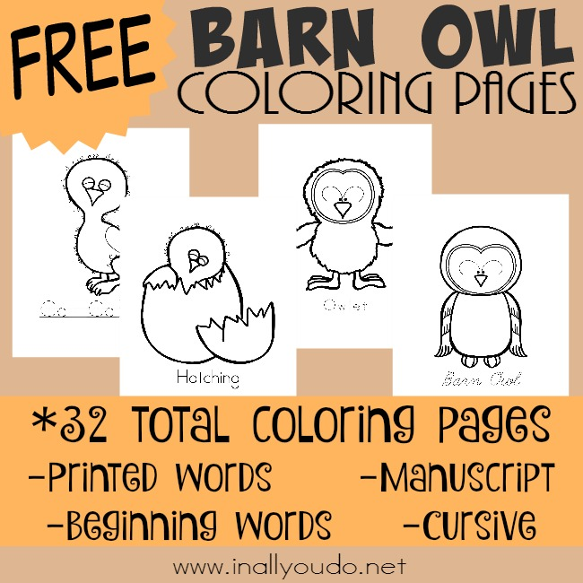 Owls are fascinating and amazing creatures. Introduce the Barn Owl with these fun Life Cycle coloring pages! 32 pages in 4 different writing styles!! :: www.inallyoudo.net