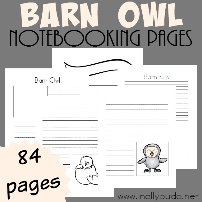 If you're studying Owls this year, don't miss these Barn Owl Notebooking Pages! Over 84 pages of blank templates perfect for research! :: www.inallyoudo.net