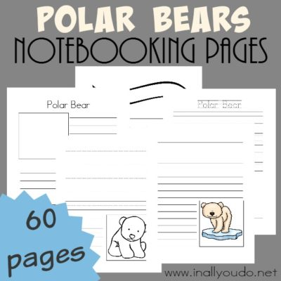 Polar Bear Notebooking Pages