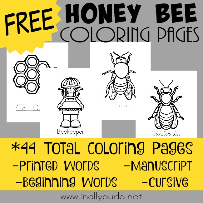 Honey Bee Coloring Pages In All You Do