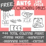 Ant Life Cycle Coloring Pages {FREE}