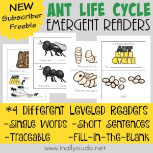 Practice reading skills and learn all about the life cycle of an Ant with these SUPER CUTE Emergent Readers! Includes 4 levels to help improve reading! :: www.inallyoudo.net