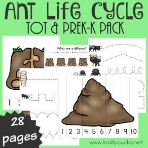 Ant Tot & PreK-K Pack