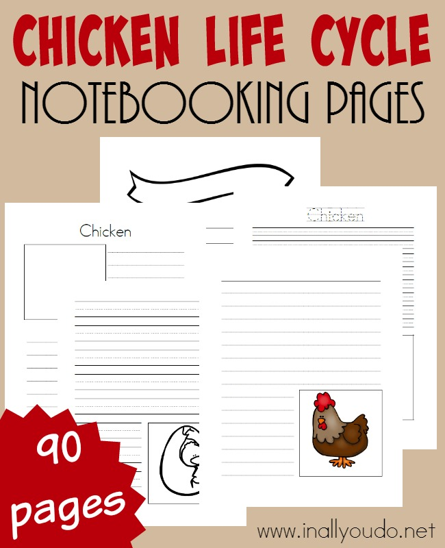 Notebooking pages are a great way to record all kids learn about a particular subject. Check out these Chicken Life Cycle Notebooking Pages!! Includes 90 different templates! :: www.inallyoudo.net