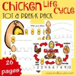 Chicken Life Cycle Tot & PreK-K Pack