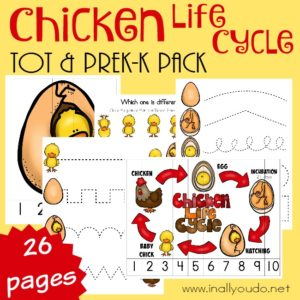 Chicken Tot & PreK-K Pack