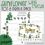 Sunflower Life Cycle Tot & PreK-K Pack