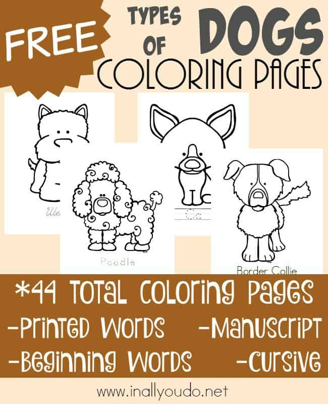 If your students love dogs, then they will love learning about different types with these fun coloring pages! {44 total pages} :: www.inallyoudo.net