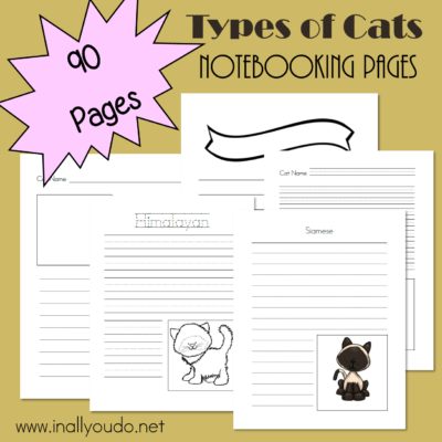 Types of Cats Notebooking Pages