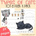 Types of Cats Tot & PreK-K Pack