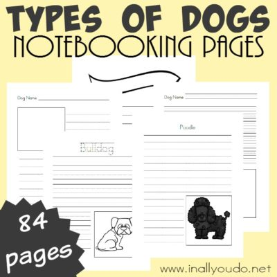 Types of Dogs Notebooking Pages