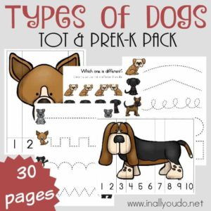 Types of Dogs Tot & PreK-K Pack