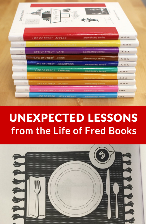 Learning Math doesn't have to be hard or boring. Check out all the fun and interesting lessons you can learn through Life of Fred! :: www.inallyoudo.net