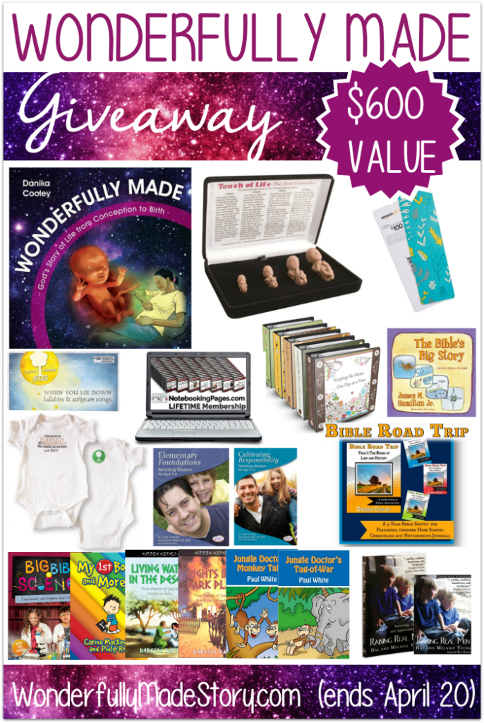 "Enter for your chance to WIN over $600 in prizes including the new release, ""Wonderfully Made""!! Ends 4.20.16!! :: www.inallyoudo.net"