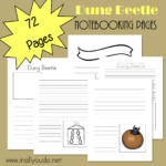 Dung Beetle Notebooking Pages + a link-up
