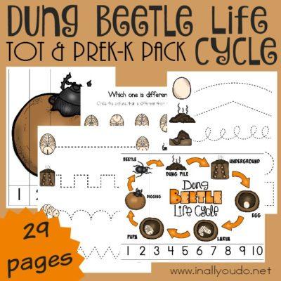 Dung Beetle Tot & PreK-K Pack