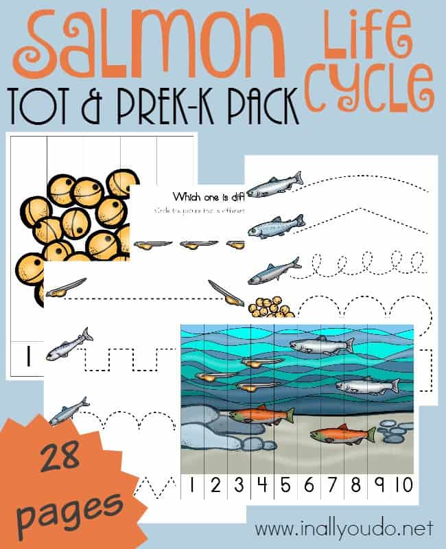 This fun-filled, activity packed Salmon Tot & PreK-K Pack is perfect for any fish unit or as a stand alone set. :: www.inallyoudo.net