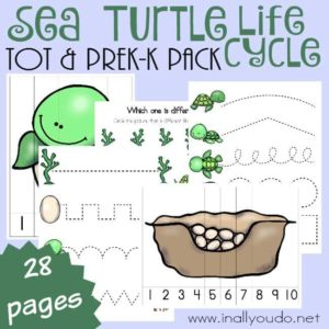 This Sea Turtle Life Cycle Tot & PreK-K Pack is full of puzzles & activities to teach your little ones about Sea Turtles. :: www.inallyoudo.net
