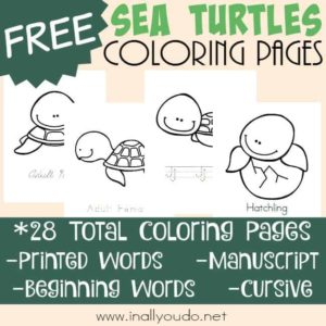 Your kids will have a great introduction to the Life Cycle of Sea Turtles with these fun Coloring Pages. Includes 4 different handwriting types. :: www.inallyoudo.net
