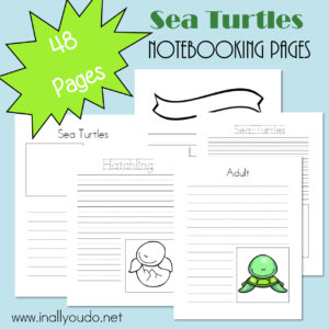 Notebooking Pages are a great way to record new findings, observations and research on a particular subject. Grab these Sea Turtle themed pages today! :: www.inallyoudo.net