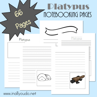 Platypus Notebooking Pages