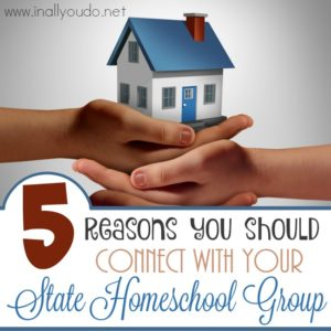 You don't have to homeschool alone! Here are 5 reasons to connect with your State Homeschool Group! :: www.inallyoudo.net
