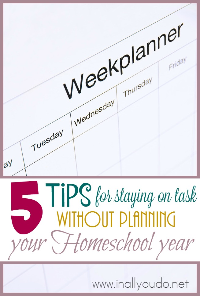 Have you ever thought about throwing out the planner, but worried you wouldn't stay on task? Here are 5 tips to help! :: www.inallyoudo.net