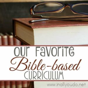 Using Bible-based curriculum is one of the main reasons we continue to homeschool. Check out our favorites! :: www.inallyoudo.net
