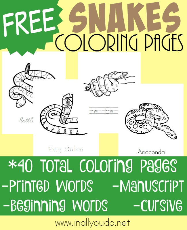 Whether you're learning about snakes specifically or reptiles in general, don't forget to grab these Snakes Coloring pages. Includes 10 different types of snakes. :: www.inallyoudo.net