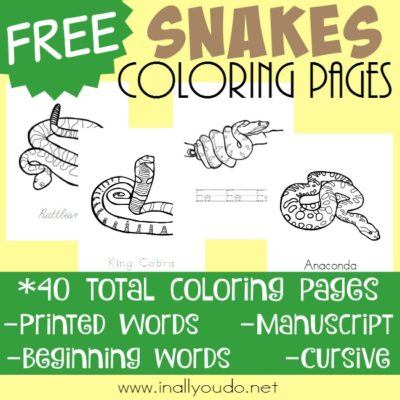 Types of Snakes Coloring Pages