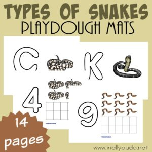 "These Types of Snakes are a great way to help kids work on their fine motor skills as well as letter and number recognition all while ""playing"" and having fun! Get them FREE today! :: www.inallyoudo.net"