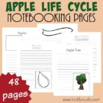 Apple Life Cycle Notebooking Pages