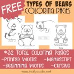 Types of Bears Coloring Pages