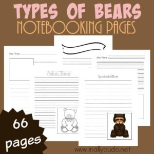 Kids can record what they learn about 8 different types of bears with these notebooking pages. Includes 66 different pages in 3 different handwriting levels. :: www.inallyoudo.net