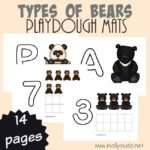 Types of Bears Playdough Mats