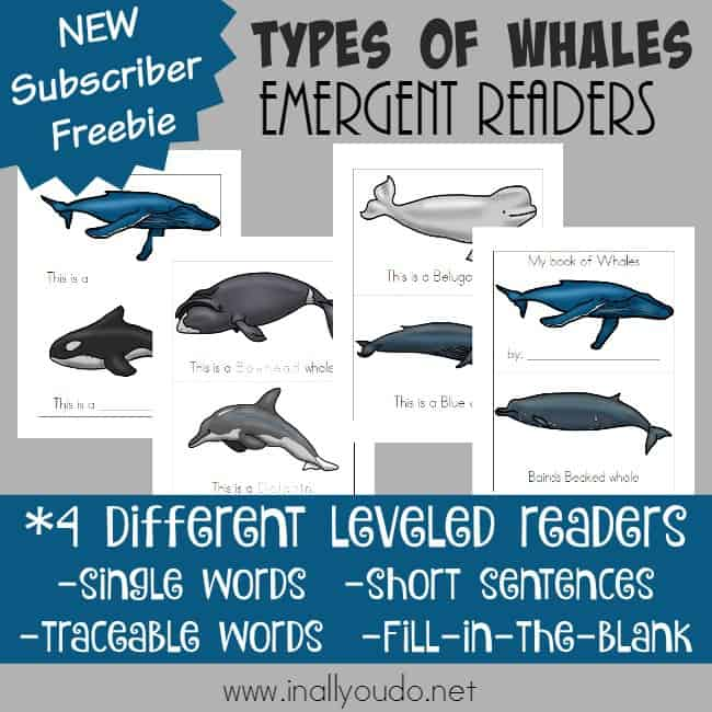Emergent readers are a great way to introduce a new topic while working on sight words and reading skills! Grab these Whales Emergent Readers today! :: www.inallyoudo.net