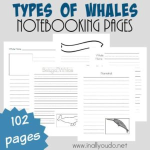 If you've got a Marine unit study this year, don't miss these Types of Whales Notebooking Pages! This set includes over 100 pages of different notebooking styles for all ages! :: www.inallyoudo.net