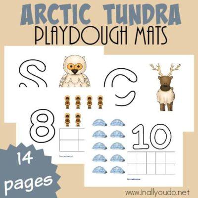 Arctic Tundra Playdough Mats
