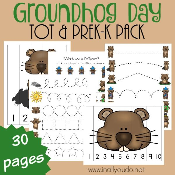 This Groundhog Day Tot & PreK-K pack is the perfect blend of games and learning! Packed full of prewriting, puzzles, clip cards, beginning sounds and SO MUCH MORE!! :: www.inallyoudo.net