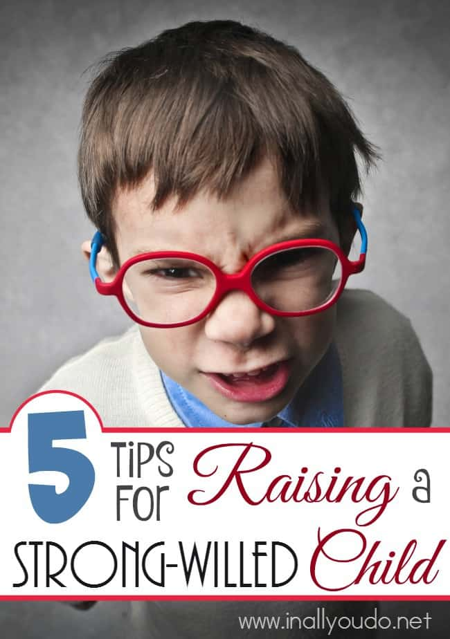 Are you raising a strong-willed child? Do they drive you crazy on the best of days? Here are 5 Tips to help you! :: www.inallyoudo.net