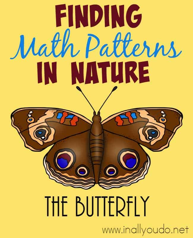Have you ever noticed all the different math patterns you can find in nature? With this simple, yet fun lesson kids can learn to recognize patterns in nature - like the butterfly! :: www.inallyoudo.net