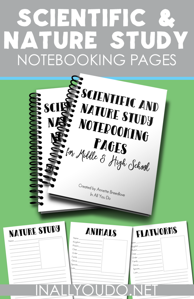 This 28-page notebooking set is the perfect addition to any middle or high schooler's scientific or nature study.The Notebooking Pages are generic so that you can use them with any animal - vertebrate or invertebrate - or any unit study. :: www.inallyoudo.net