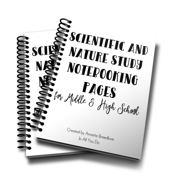 This 28-page notebooking set is the perfect addition to any middle or high schooler's scientific or nature study. The Notebooking Pages are generic so that you can use them with any animal - vertebrate or invertebrate - or any unit study. :: www.inallyoudo.net