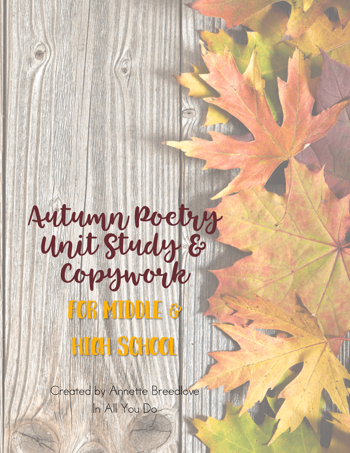This Autumn Themed Poetry Copywork pack is perfect for Middle and High Schoolers. This pack includes 18 different poems with plain lines for copywork, for a total of 114 pages. :: www.inallyoudo.net
