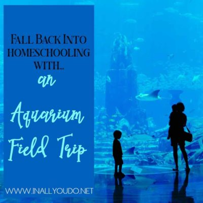 An aquarium field trip can be a great way to truly add more excitment to your homeschooling school year. Here are some ways to make your next trip a success! #fieldtrips #homeschooling #homeschoolers #homeschool
