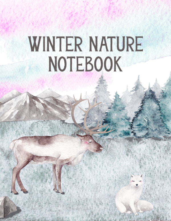 If you want your kids to get out this winter, try this FREE Winter Nature Notebook. These 7 pages are perfect for a winter walk, inspiring some creative writing and more! Download yours today. #winter #winternotebook #winternaturewalk #iaydhomeschoolers