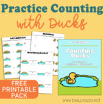 Practice Counting with Ducks + a FREE Printable Counting Pack